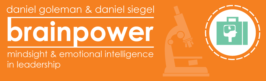 Brainpower Mindsight and Emotional Intelligence in Leadership
