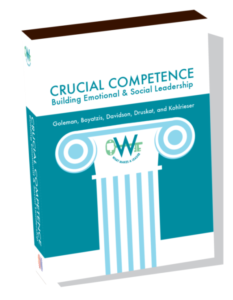 crucial-competence-daniel-goleman