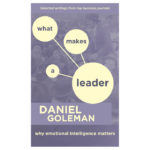 What Makes A Leader: Why Emotional Intelligence Matters