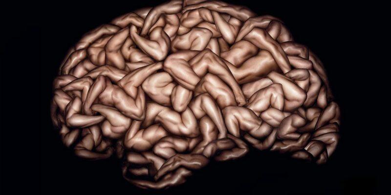 Flex Your Mental Muscle - Key Step Media